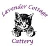 Lavender Cottage Cattery
